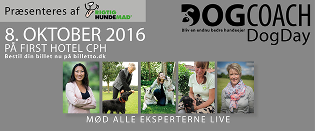 DogDay workshop for hundeejere